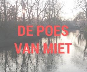 De poes van Miet