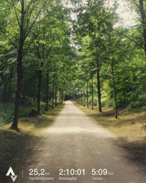 Zonienwoud 25 km duurloop