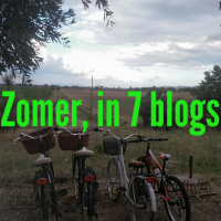 De zomer, in 7 blogs