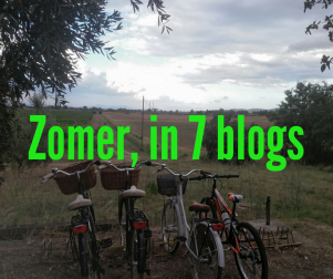 Zomer, in 7 blogs