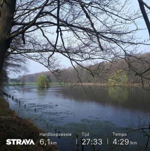 6 km park vandaag