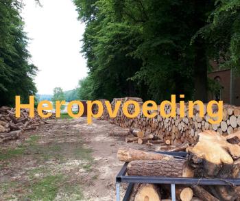 Heropvoeding
